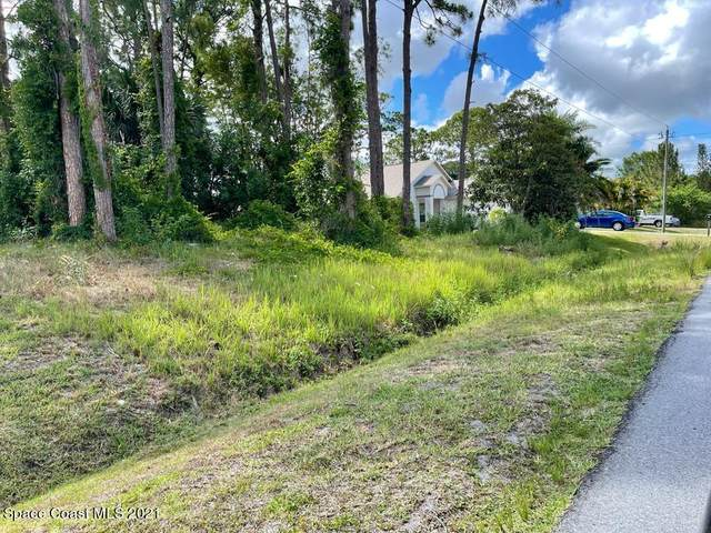 1230 Island Avenue NW, Palm Bay, FL 32907 (MLS #906561) :: Engel & Voelkers Melbourne Central