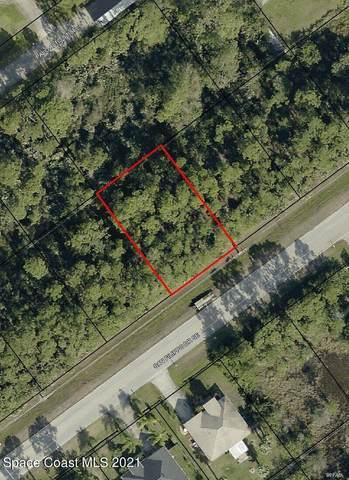 2410 San Filippo Drive SE, Palm Bay, FL 32909 (MLS #906761) :: Armel Real Estate