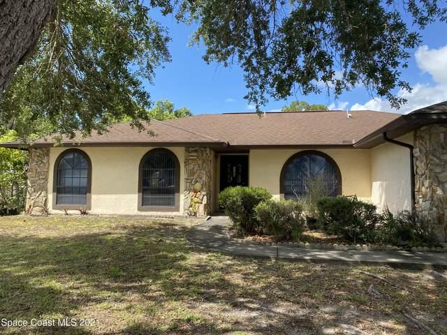 1194 Penn Court NW, Palm Bay, FL 32907 (MLS #906830) :: Armel Real Estate