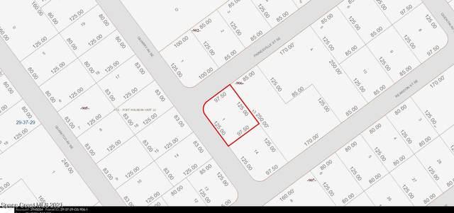 800 Painesville Street SE, Palm Bay, FL 32909 (MLS #906831) :: Armel Real Estate