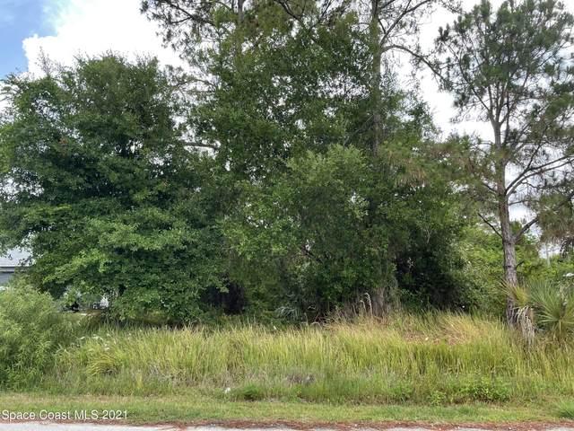 359 Wardell Avenue SW, Palm Bay, FL 32908 (MLS #906841) :: Armel Real Estate