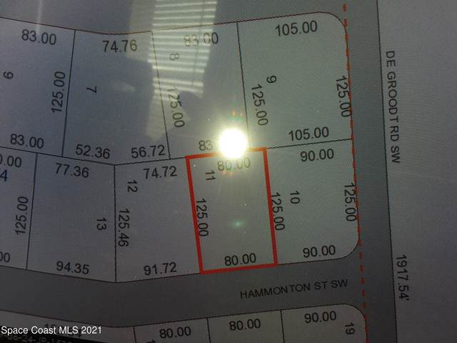 317 Hammonton Street SW, Palm Bay, FL 32908 (MLS #906885) :: Armel Real Estate