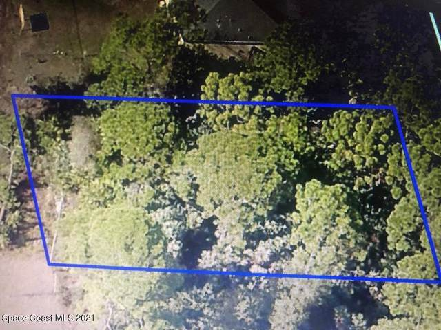 1538 Leeward Avenue SE, Palm Bay, FL 32909 (MLS #907097) :: Armel Real Estate