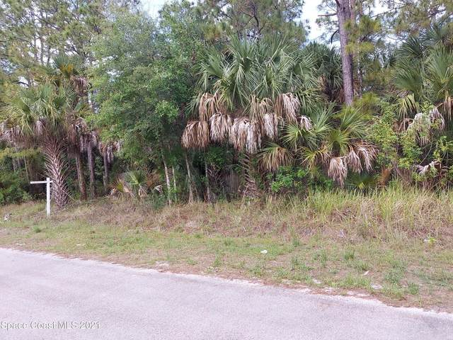 1677 NW Carbondale Avenue NW, Palm Bay, FL 32907 (MLS #907144) :: Armel Real Estate