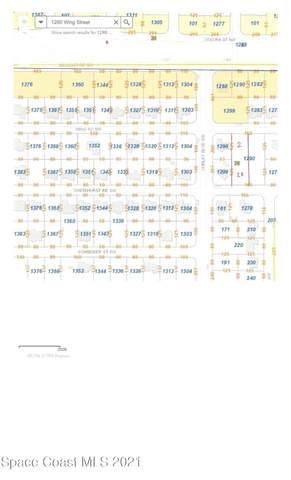 1290 Wing Road SW #36, Palm Bay, FL 32908 (MLS #907149) :: Armel Real Estate