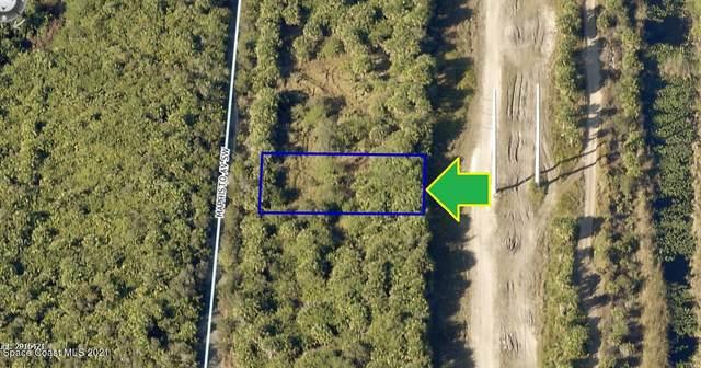 2645 Maphisto Avenue SW, Palm Bay, FL 32908 (MLS #907284) :: Blue Marlin Real Estate