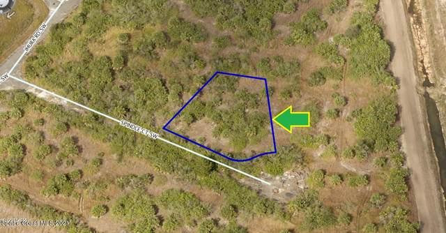 951 Spindle Court SW, Palm Bay, FL 32908 (MLS #907286) :: Blue Marlin Real Estate