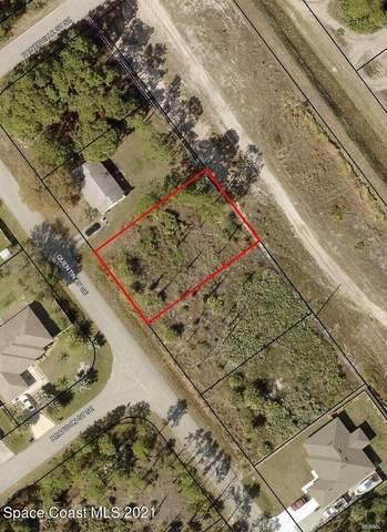 2521 Quentin Avenue SE, Palm Bay, FL 32909 (MLS #907326) :: Armel Real Estate