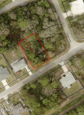 1191 Tarleton Street SE, Palm Bay, FL 32909 (MLS #907328) :: Armel Real Estate