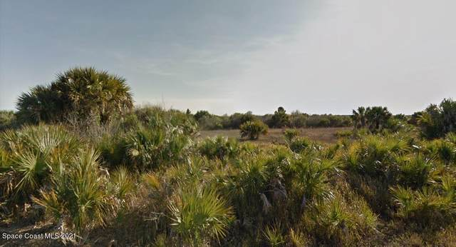 982 Astilbe Street SW, Palm Bay, FL 32908 (MLS #907506) :: Keller Williams Realty Brevard