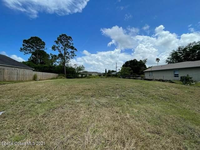 1326 Hegira Street NW, Palm Bay, FL 32907 (MLS #907522) :: Armel Real Estate