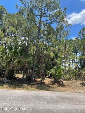 1289 Hastings Road SW, Palm Bay, FL 32908 (MLS #907619) :: Armel Real Estate