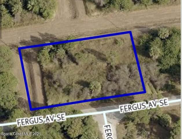 3131 Fergus Avenue SE, Palm Bay, FL 32909 (MLS #907851) :: Engel & Voelkers Melbourne Central