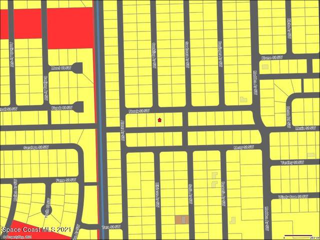 842 Novak Street SW, Palm Bay, FL 32908 (MLS #907852) :: Engel & Voelkers Melbourne Central