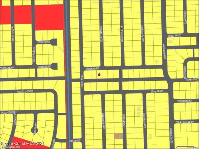 860 Novak Street SW, Palm Bay, FL 32908 (MLS #907853) :: Engel & Voelkers Melbourne Central