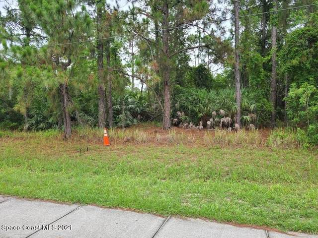 000 Hurley Boulevard SW, Palm Bay, FL 32908 (MLS #908003) :: Armel Real Estate
