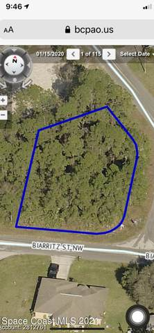 1305 NW Biarritz Street NW, Palm Bay, FL 32907 (MLS #908018) :: Engel & Voelkers Melbourne Central