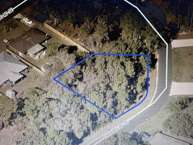 1090 Cherokee Road SE, Palm Bay, FL 32909 (MLS #908042) :: Engel & Voelkers Melbourne Central