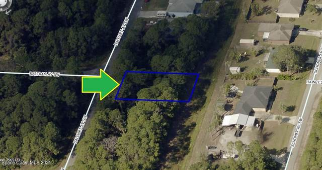 849 Dalhart Avenue SW, Palm Bay, FL 32908 (MLS #908109) :: Armel Real Estate