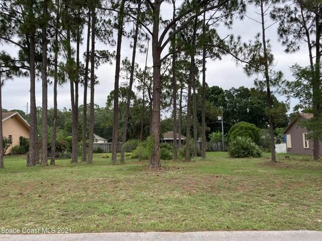 1625 Kanabec Avenue NW, Palm Bay, FL 32907 (MLS #908215) :: Armel Real Estate