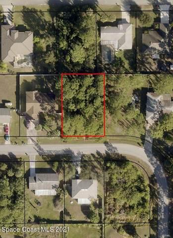 447 Trumpet Street SW, Palm Bay, FL 32908 (MLS #908257) :: Armel Real Estate