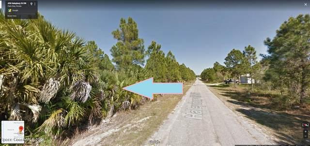 489 Haleybury Street SW, Palm Bay, FL 32908 (MLS #908377) :: Armel Real Estate