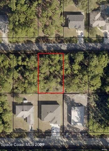474 Hammond Street SW, Palm Bay, FL 32908 (MLS #908427) :: Armel Real Estate