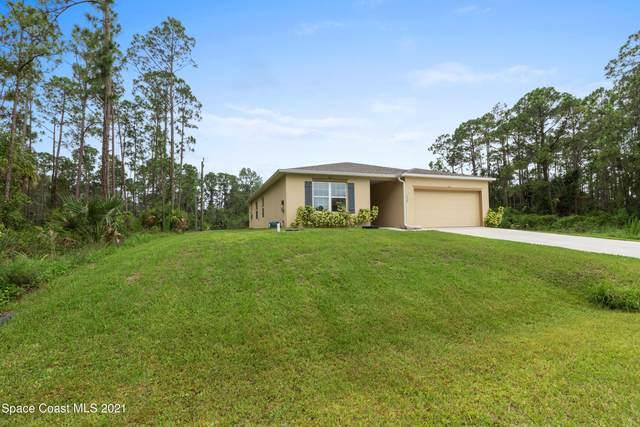 334 Olin Road SW, Palm Bay, FL 32908 (MLS #908449) :: Armel Real Estate