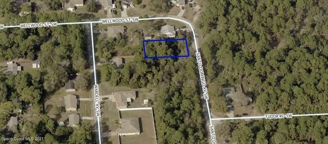 236 Santo Domingo Avenue SW, Palm Bay, FL 32908 (MLS #908451) :: Armel Real Estate