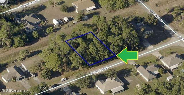 977 Palo Alto Street SE, Palm Bay, FL 32909 (MLS #908459) :: Armel Real Estate