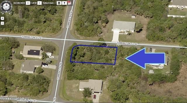 3141 Corner Of Torrence Avenue SE, Palm Bay, FL 32909 (MLS #908496) :: Blue Marlin Real Estate