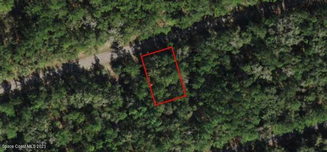 800 E Byrd, Citrus Springs, FL 34434 (MLS #908512) :: Armel Real Estate