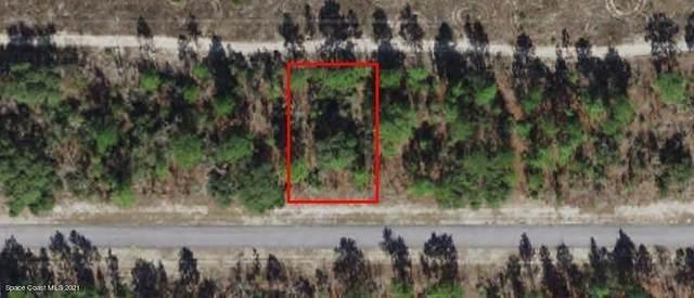 6850 N Sandborn, Citrus Springs, FL 34433 (MLS #908533) :: Blue Marlin Real Estate