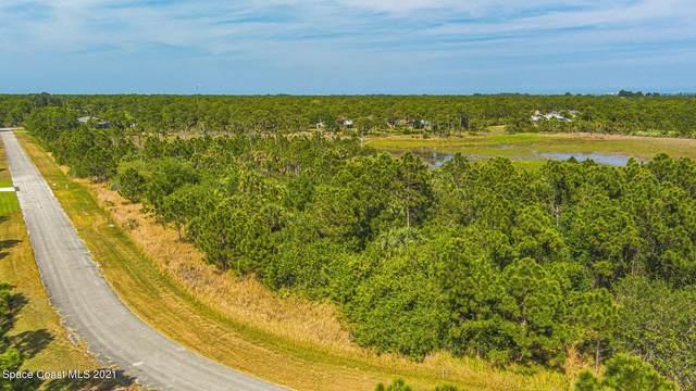 7061 Artesia Avenue, Grant Valkaria, FL 32949 (MLS #908589) :: Blue Marlin Real Estate