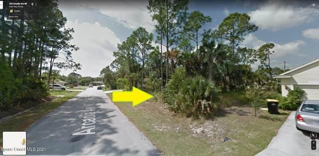 524 Arcadia Avenue NE, Palm Bay, FL 32907 (MLS #908625) :: Blue Marlin Real Estate
