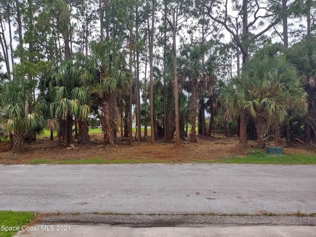 1636 Carbondale Avenue NW, Palm Bay, FL 32907 (MLS #908650) :: Armel Real Estate