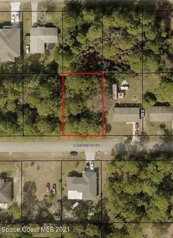 1081 Baysinger Street NW, Palm Bay, FL 32907 (MLS #908777) :: Premium Properties Real Estate Services