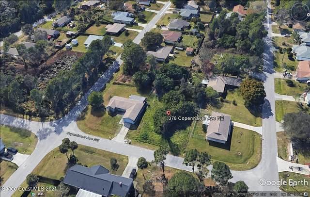 378 Copenhaver Avenue NE, Palm Bay, FL 32907 (MLS #908911) :: Blue Marlin Real Estate
