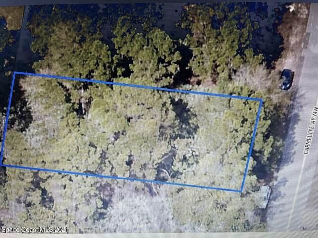 154 Carmelite Avenue NW, Palm Bay, FL 32907 (MLS #909022) :: Premium Properties Real Estate Services