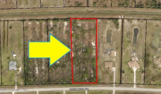 246 Deer Run Road, Palm Bay, FL 32909 (MLS #909311) :: Vacasa Real Estate