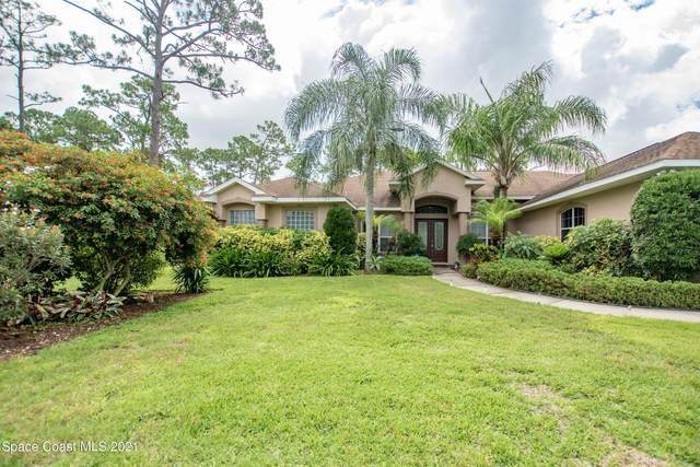 4055 Fawn Lake Boulevard, Mims, FL 32754 (MLS #909541) :: Premium Properties Real Estate Services