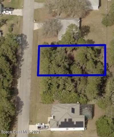 225 Jacaranda Avenue NW, Palm Bay, FL 32907 (MLS #909659) :: Premium Properties Real Estate Services