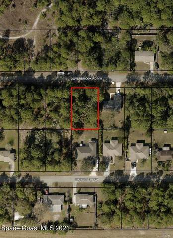 786 Doverbrook Road NW, Palm Bay, FL 32907 (MLS #909859) :: Premium Properties Real Estate Services