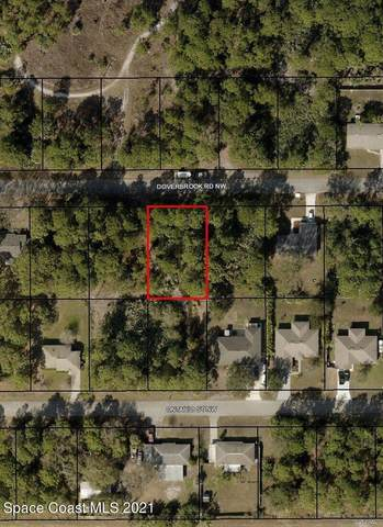 796 Doverbrook Road NW, Palm Bay, FL 32907 (MLS #909860) :: Premium Properties Real Estate Services
