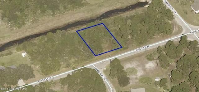383 Paigo Street SE, Palm Bay, FL 32909 (MLS #910138) :: Blue Marlin Real Estate