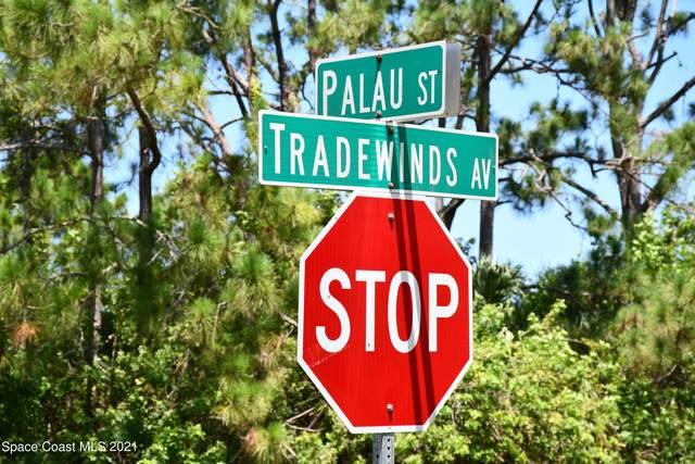1312 Palau Street SE, Palm Bay, FL 32909 (MLS #910286) :: Keller Williams Realty Brevard