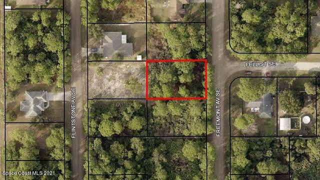 2724 SE Freemont Avenue SE, Palm Bay, FL 32909 (MLS #910394) :: Blue Marlin Real Estate