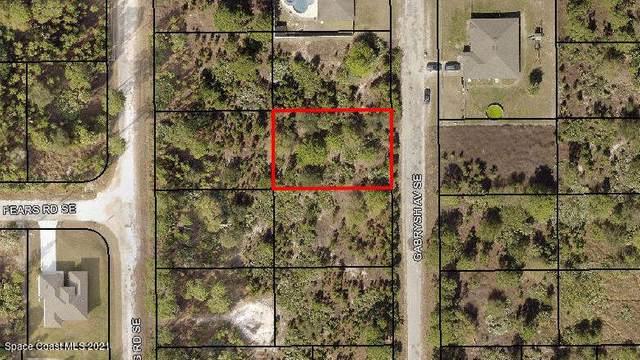 3014 Gabrysh Avenue SE, Palm Bay, FL 32909 (MLS #910398) :: Blue Marlin Real Estate
