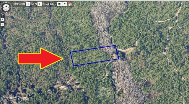 00000 No Access West Of I-95, Mims, FL 32754 (MLS #910658) :: Engel & Voelkers Melbourne Central