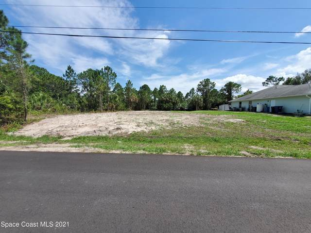 318 Silverfrost Street SE, Palm Bay, FL 32909 (MLS #910684) :: Blue Marlin Real Estate